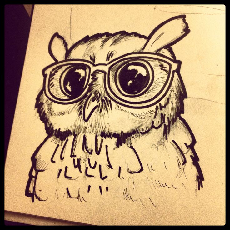 Cute owl love drawing