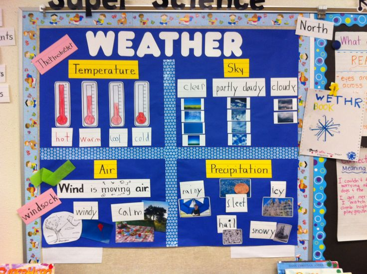Science TEKS 1.8A: Record weather information (RRISD)