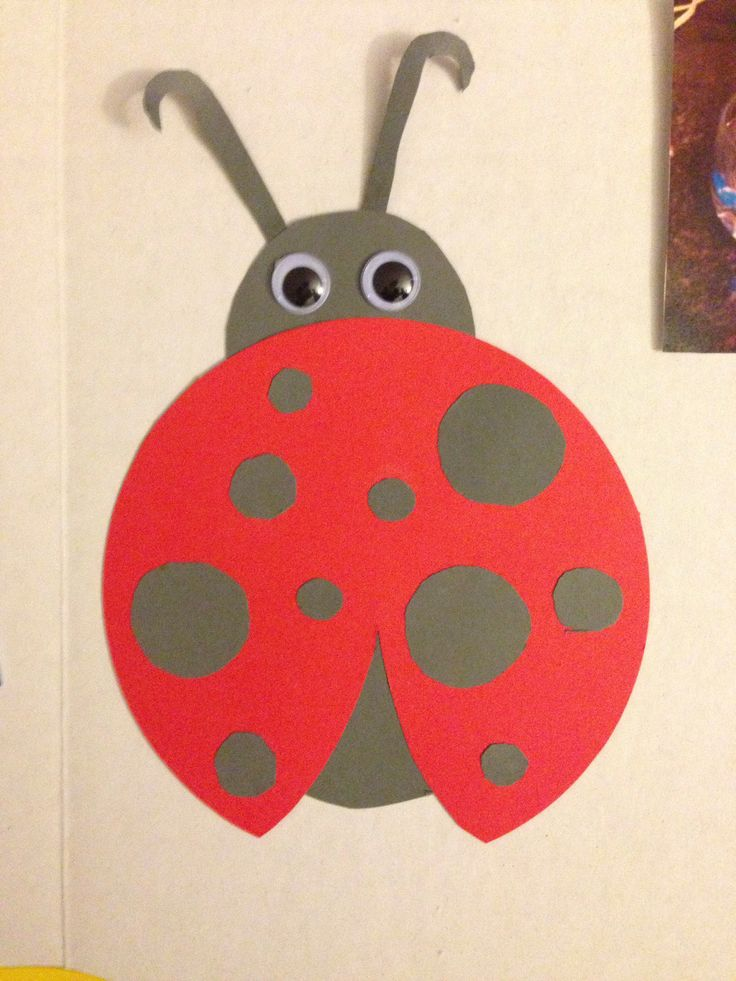 Lady Bug Construction Paper With Images Animal