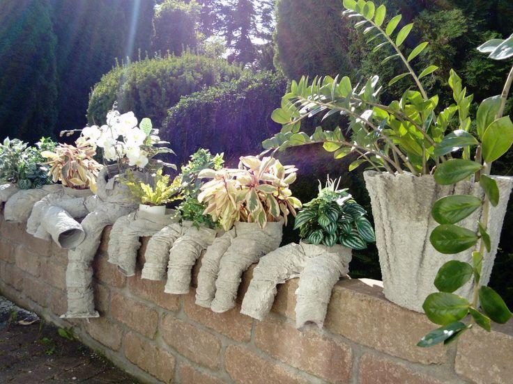 Winter Garden - Events - Kind regards - Tsila