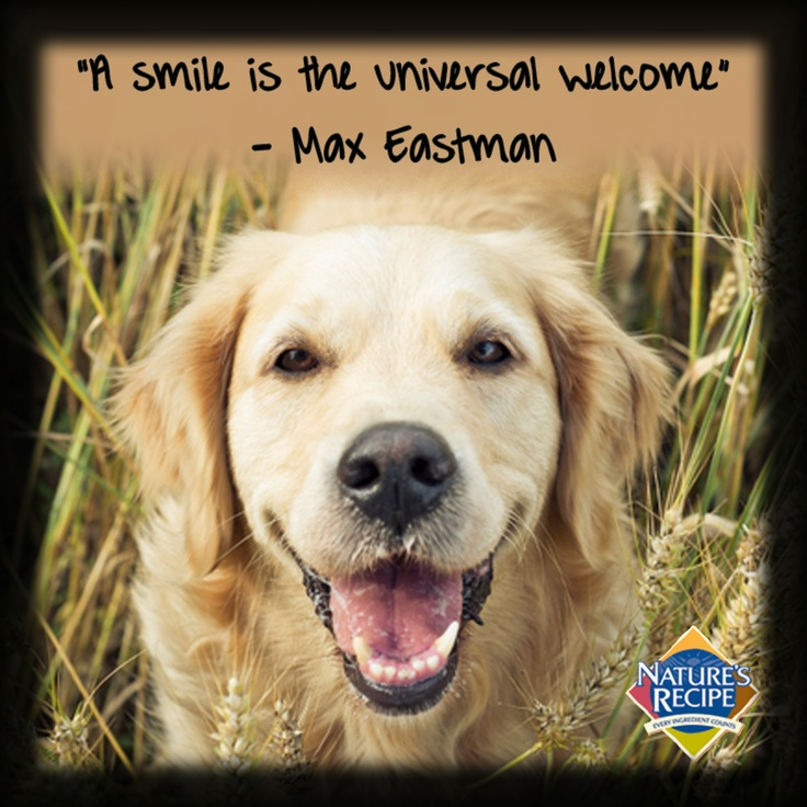 """""""A smile is the universal Max Eastman"""