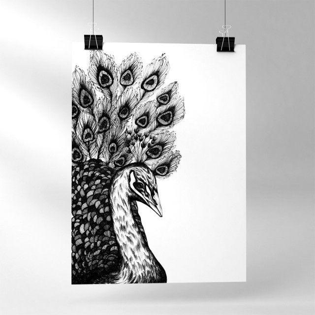 Peafowl - Sofie Rolfsdotter #nordicdesigncollective #sofierolfsdotter #peacock #peafowl #feather #feathers #poster #bird #swedishdesigner