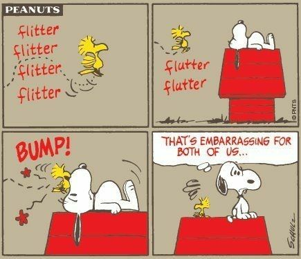 #thepeanutsgang #pnts #schulz #snoopy #woodstock #flitter #bump #embarrassing #bothofus