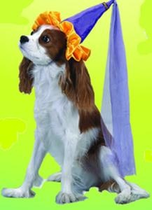 Lil' Princess Pet Costume #dog costume #dog princess costume #dogs in halloween costumes #princess dog costume