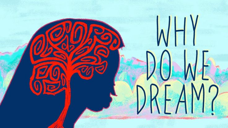Why do we dream? In the 3rd millennium BCE, Mesopotamian kings recorded and interpreted their dreams on wax tablets. In the years since, we haven't paused in our quest to understand why we dream. And while we still don't have any definitive answers, we have some theories. Amy Adkins reveals the top seven reasons why we might dream.