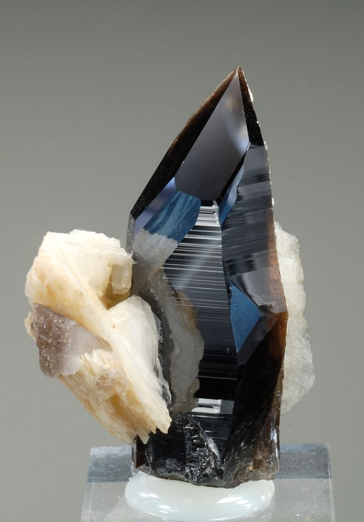 Gemmy lustrous Smoky Quartz with 2 shards of Calcite from Schafkopf, Hollersbachtal, Pinzgau, Salzburg, Austria. Love the sharp color contrast. / Mineral Friends <3
