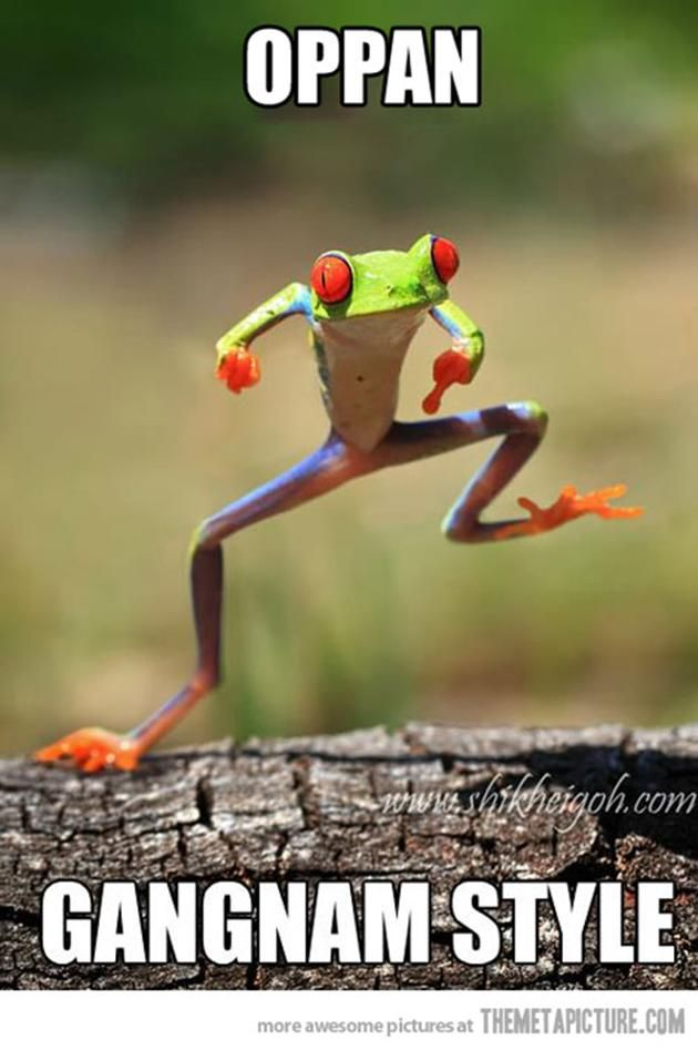 Funny Animal Quotes | Vh funny-frog-dancing-gangnam-style ...