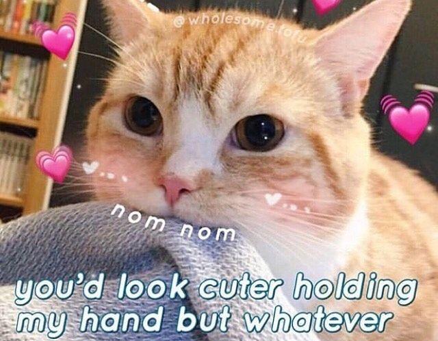 Instagram Post By You Re Too Cute Jun 8 2019 At 12 44am Utc Cute Love Memes Happy Memes Funny Couples Memes