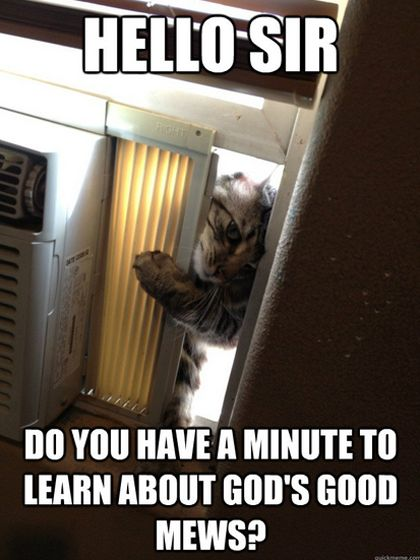 funny, funny pictures, funny photos, funny cats, cat, cute, KITTY MISSIONARY: Hello Sir, Do You Have a Minute for God
