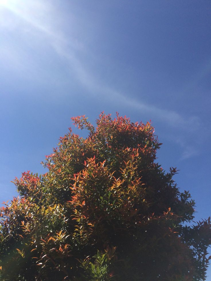 Good weather 🌤