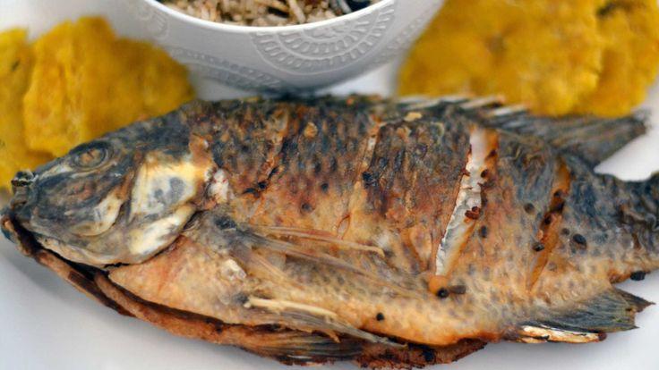 Balık ve deniz ürünleri için püf noktaları nedir, nelerdir bunları çok iyi bilirseniz balığı en lezzetli pişiren siz olursunuz.