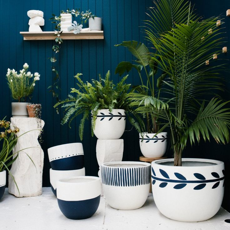 How good are these painted planters from Australian design duo Poppy Lane and Scott Gibson? Chic pots are not easy to find - especially sizable ones, big enough for large plants. So you can imagine my excitement upon discovering this colorful, graphic collection. The only foreseeable issue is