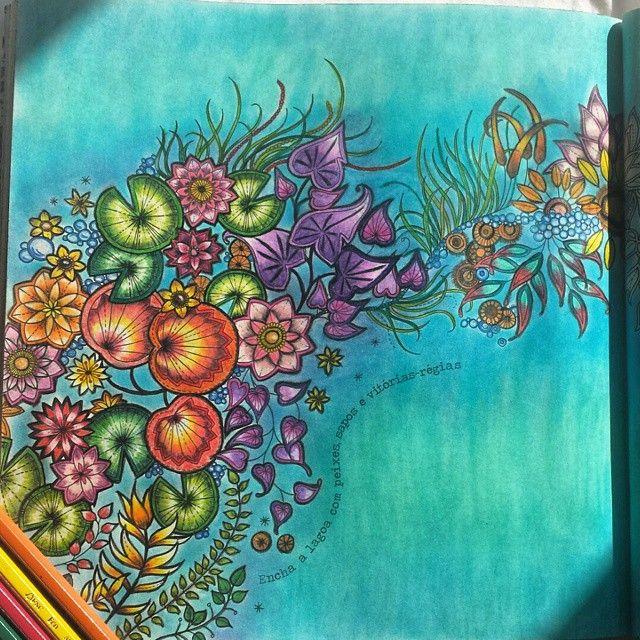 Johanna Basford Adult Coloring Books Colouring Colored Pencils Secret Gardens Color Inspiration Zentangle Markers