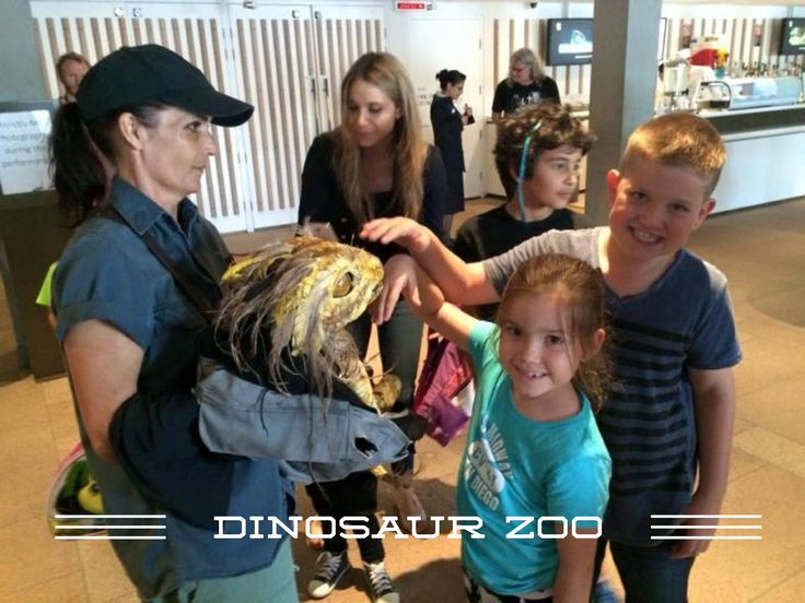DINOSAUR ZOO : A Visit to the Sydney Opera House with Kids