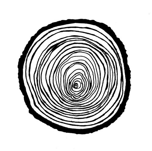 Wood Rings Illustration by blueberryshoes, via Flickr
