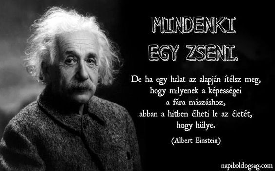 Einstein idézete Mások tehetségének megítéléséről.  A kép forrása: Napi ...: