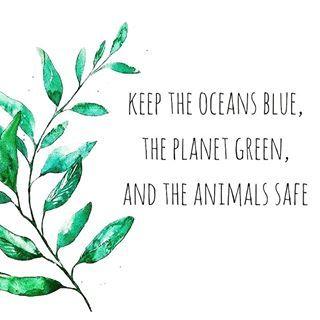 Respect for Mother Earth 🙌🏻🌱 📸 Deserea Irwin-Gnann #veganismo #vegan… – Marg