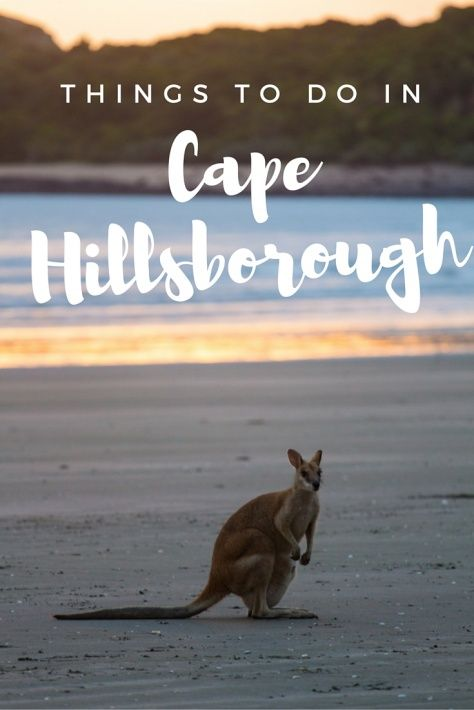 things to do in Cape Hillsborough Mackay