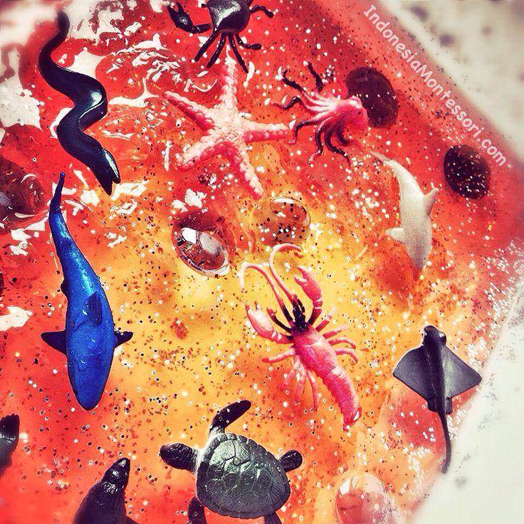 Ide Permainan Sensory : Jelly Belly the Erythraean Sea