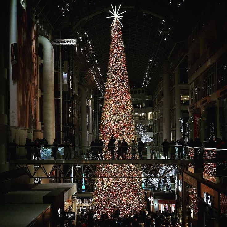 29 Curated Holidays In Toronto Ideas By Visittoronto