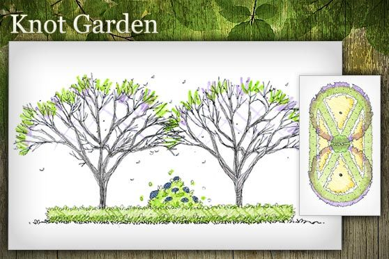 Free Landscape Design Plans | arborday.org - Free Landscape Design Plans Helps you pick trees for your area  arborday website