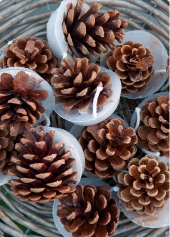 Kindle cones are natural pine cones. Their base has been set into a bed of wax infused with bark, spices and cinnamon oil. Light the wick and set amoungst the kindling and your fire will be blazing in minutes. Hand made in Dorset. Bag of 12 cones