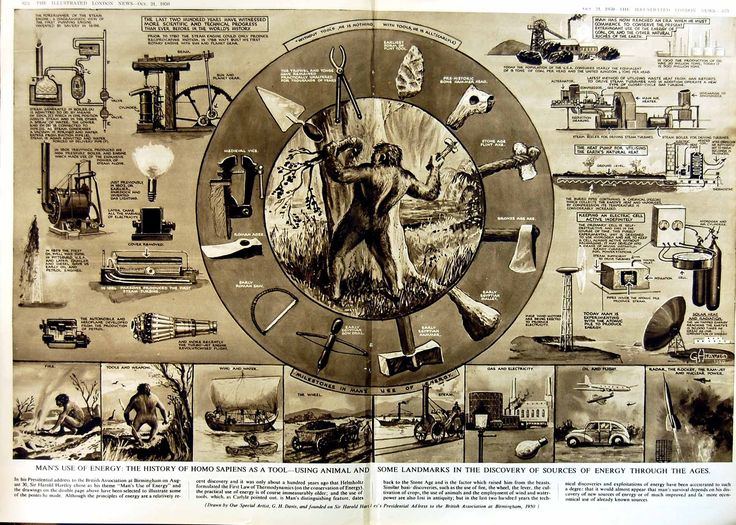 Print 1950 History Homo Sapiens Tools Energy Sources Science 280Tn178 Old Original