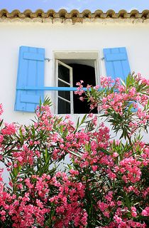 Fiscardo shutters | by angecam