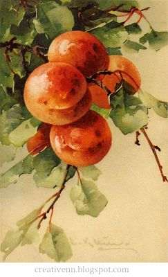 Fruit. For jobs in the style Vintage. Catherine Klein .: On the wings of inspiration.