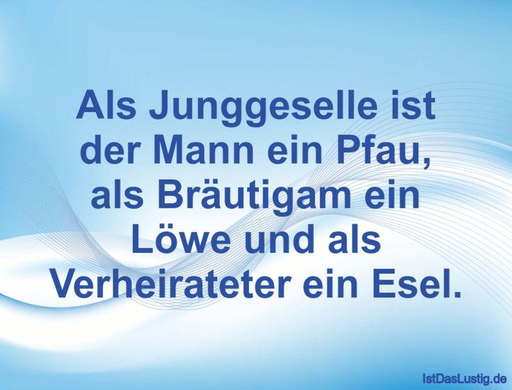 Als Junggeselle ist der Mann ein Pfau, als Bräutigam ein Löwe und als Verheirateter ein Esel. ... gefunden auf https://www.istdaslustig.de/spruch/674 #lustig #sprüche #fun #spass