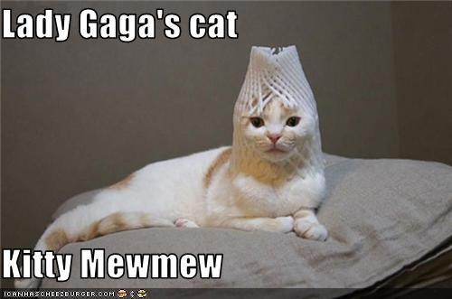 Kitty mew mew!!!