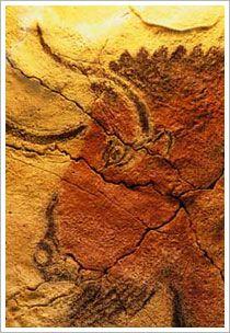 Cara de vaca de las pinturas de Altamira (Cantabria). Banco de imágenes de ISFTIC