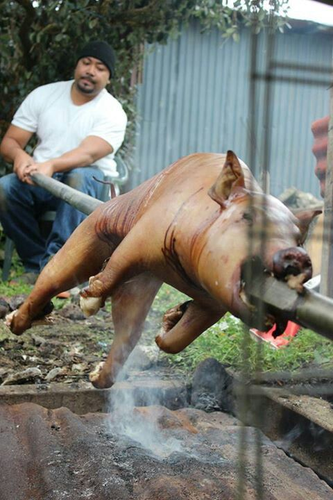 My brother roasting a pig on spit. Traditional Tongan style.