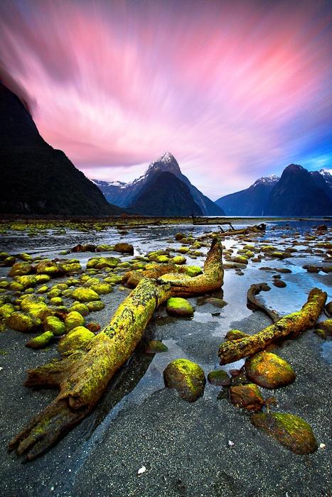 Fragments  Milford Sound, New Zealand