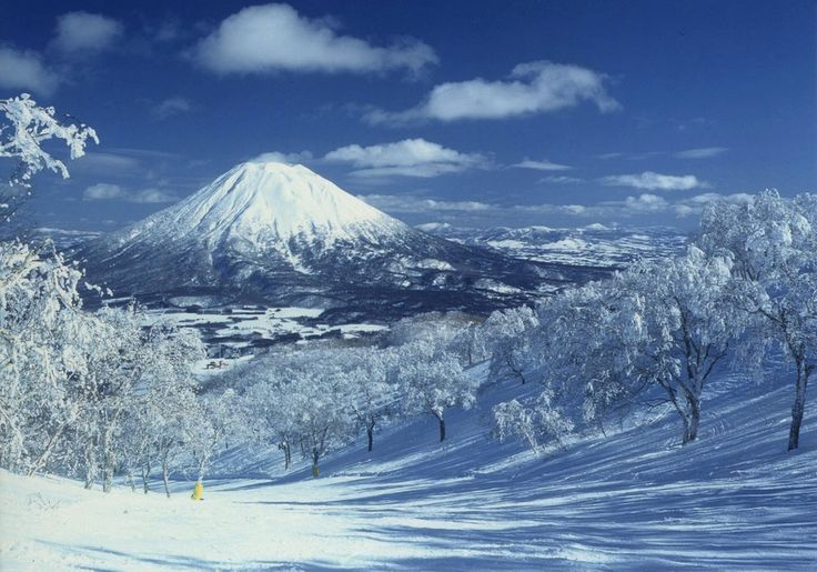 Hokkaido Niseko, Japan - beautiful powder snow heaven
