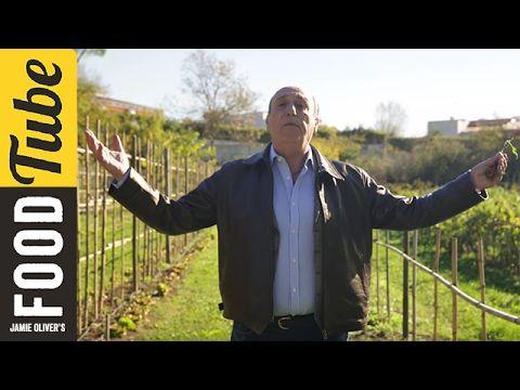 Gennaro finds an Amazing Italian Allotment! | Gennaro Contaldo