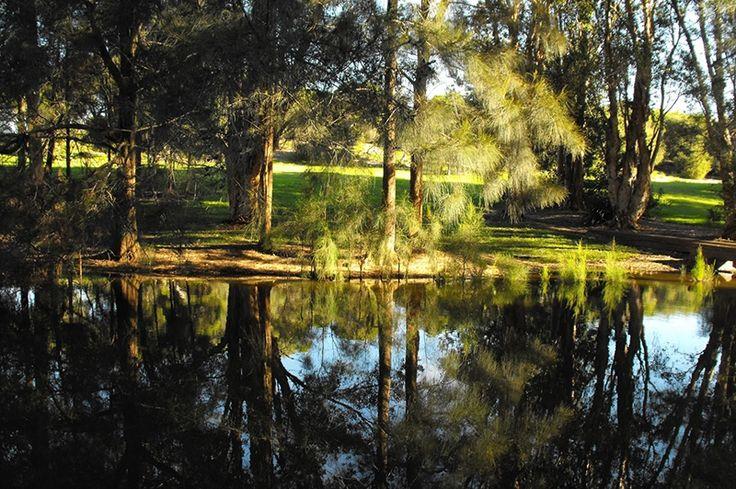 Sir Joseph Banks Park