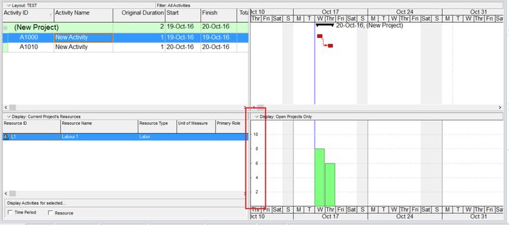 How is the Y-Axis scale determined in the Resource/Activity Usage Profile in Primavera P6