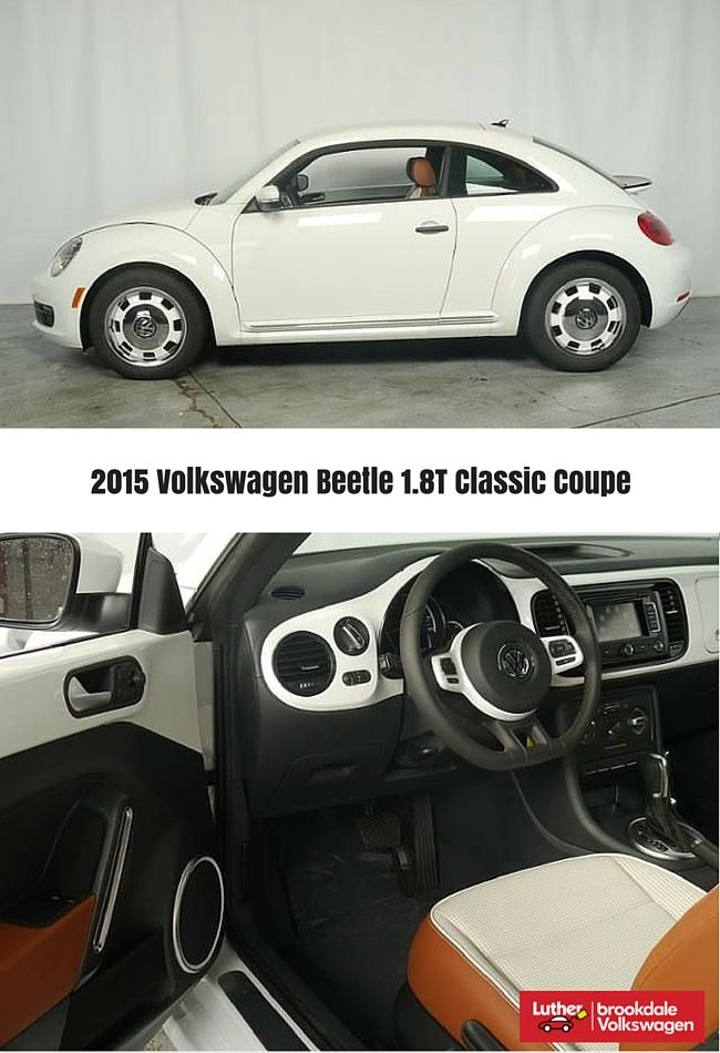 ideas  vw beetle  sale  pinterest vw bugs volkswagen beetle vintage