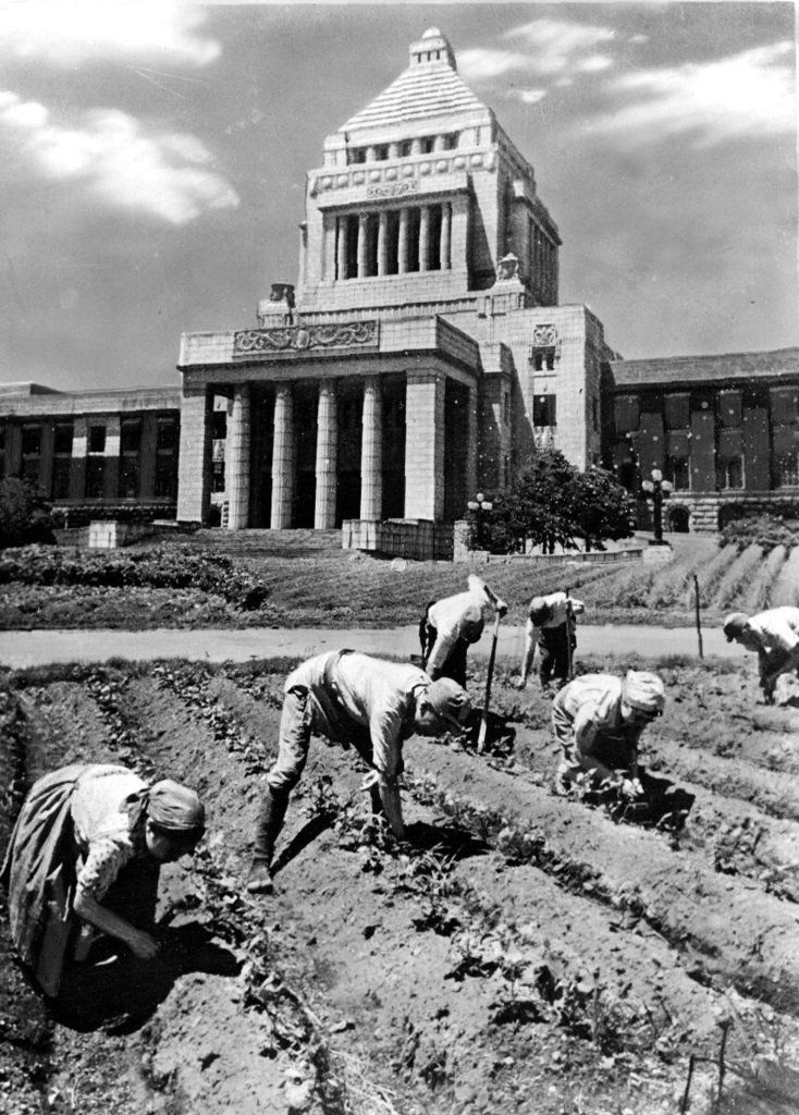 Planting vegetables in front of the Diet, 1945.