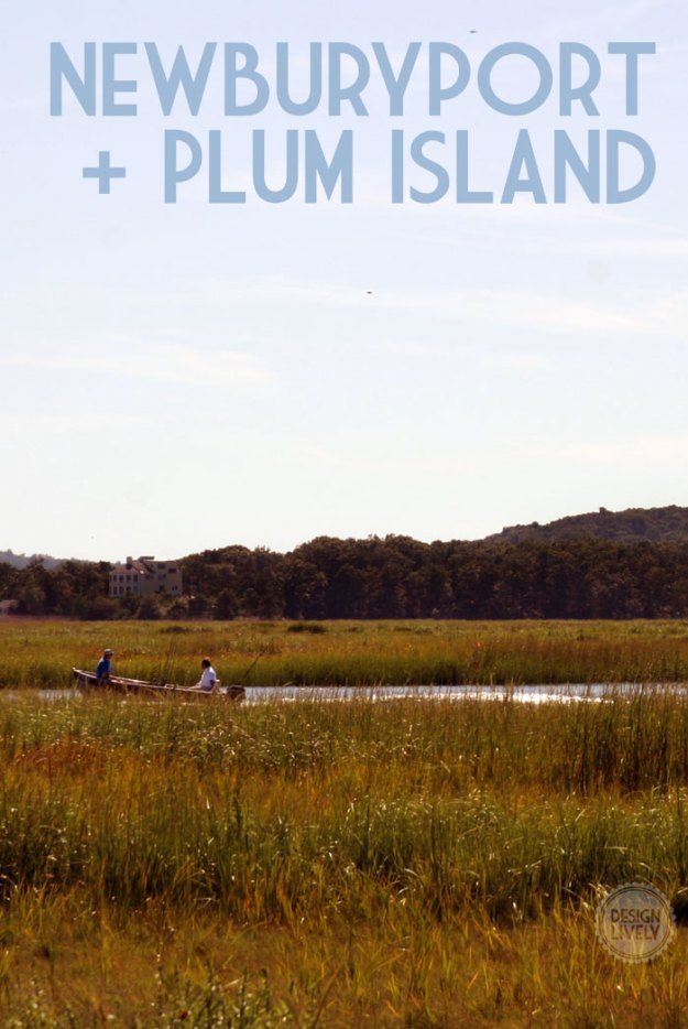 Day trip to Newburyport, MA and Plum Island