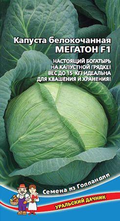 Уральский дачник | Семена - Капуста белокочанная МЕГАТОНН F1