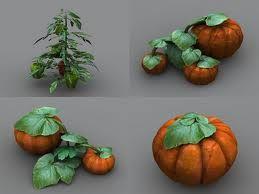 Google Image Result for http://www.dexsoft-games.com/models/images/vegetation/vegetables2/preview-5.jpg