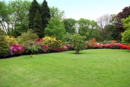 Mooi onderhouden gazon in een zomertuin met een grens van heldere kleurrijke bloeiende struiken en bomen