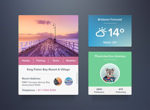3 Perfect Profile Weather Travel Widgets Set PSD…
