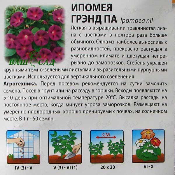 Ипомея Грэнд Па 1г купить по низкой цене Артикул: 18586 - интернет-магазин Ваш Сад