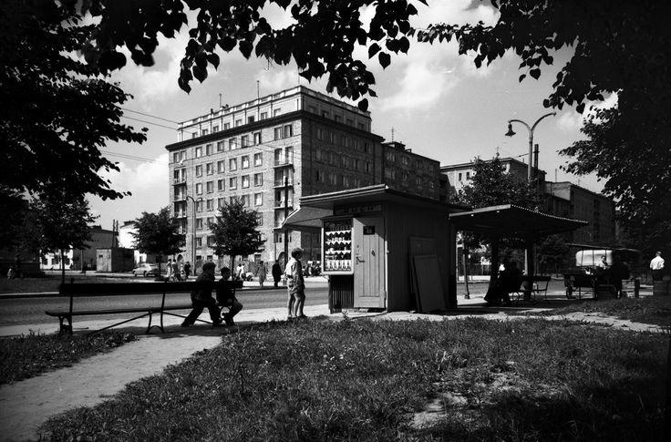 Mokotów Al. Niepodległości w rejonie ul. Dąbrowskiego na Mokotowie, 1956 rok.
