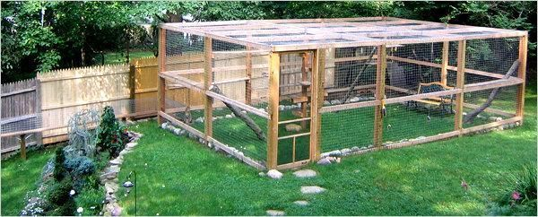 Catio Enclosures Protect Cats Outside The New York Times