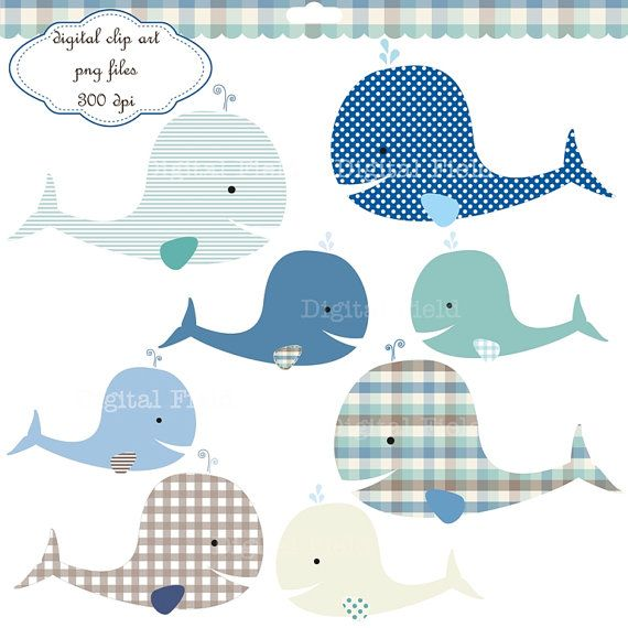 2 Whales Clipart