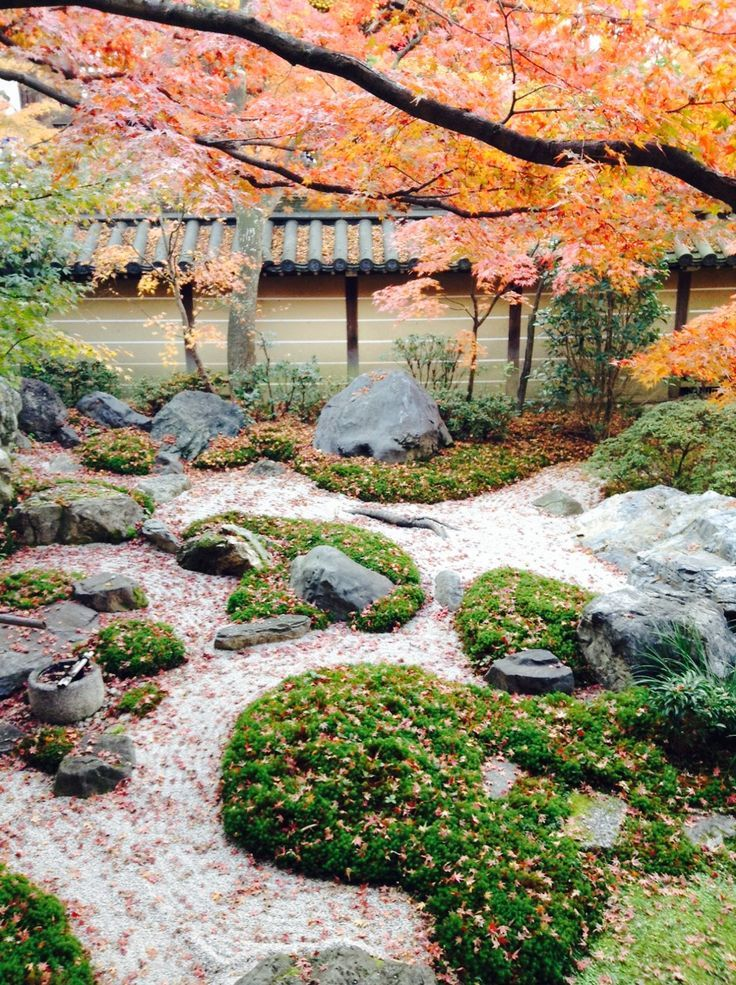 Autum colers in Eikan d Zenrin ji temple KyotoJapan